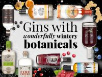 Gins with wonderfully wintery botanicals