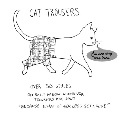 Cat in trousers