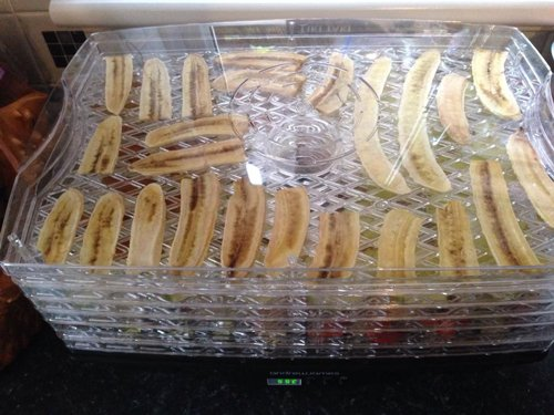 Master of Cocktails Dehydrating Bananas